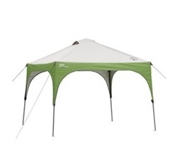 Coleman Canopies and Shelters coleman 10 ft 10 ft instant canopy